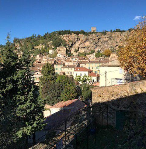 Wonderful house in Cotignac to renovate garden views.